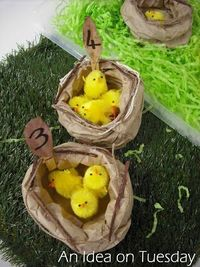 Paper Bag Nests Counting Activity