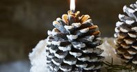Carefully made from wax to look just like a pine cone, our white frosted candle adds a touch of festive charm to your coffee table, mantelpiece or window sill. This large candle creates a lovely festive display whether lit or unlit.