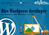 With the help of offshore WordPress developer experts, you can add a high level of interactivity, accessibility, usability and functionality to your personalized online website.
