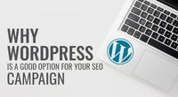 WordPress provides numerous SEO-friendly features and is the ideal CMS for SEO and your SEO campaign. Check out why WordPress is perfect for your SEO campaign.