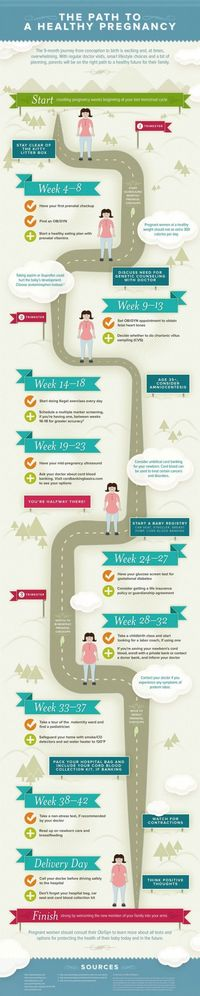 Stages of Pregnancy - Health Pregnancy