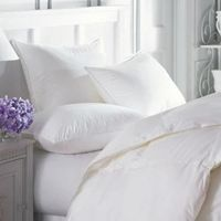 Intera Firmasoft White Goose Down Pillow by Downright $129.00