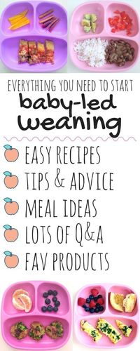 af869791c The Everyday Baby-Led Weaning eBook is a no-fuss guide to starting your