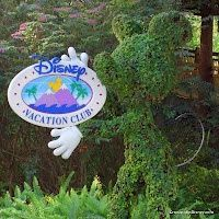 We have been a proud Disney Vacation Club family since 1993. Here's a collection of some of DisneyDad's articles on DVC.