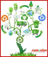 Junk King Chicago Downtown	https://www.junk-king.com/locations/chicago-downtown