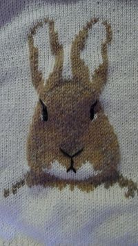 Ravelry: Peter Rabbit pattern by Pat Menchini