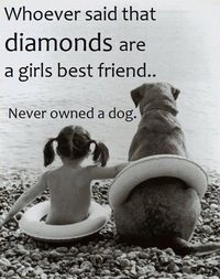 Love and so true - Click image to find more Pets Pinterest pins