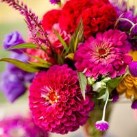 Overwhelmed by your flower options? We rounded up the best picks for each month of the year.