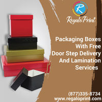 Packaging Boxes With Free Door Step Delivery & Lamination Services.jpg