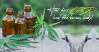 hemp oil in india For more details connect us on - https://www.hempstrol.com/