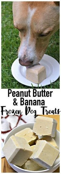 It's been a while since I've posted a homemade dog treat recipe, but today I've got a great one to share! With summer on the horizon, it's about time I made a f