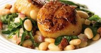Seared Scallops with White Beans and Spinach Scallops are an awesome source of lean protein, and are ridiculously easy to cook (around 6 minutes per scallop!). Combine them with white beans, spinach, and the secret flavor-packed ingredient, bacon,...
