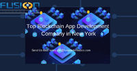 We are one of among Top blockchain app development company in New York, USA. Blockchain technology is advanced technology get the high quality service in Fusion and we offering Concurrency Wallet,Private blockchain, Hyper ledger development etc.