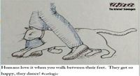 Humans love when you walk between their feet cat humor #funny #humor #funnycartoon #catfunny #cathumor #PMSLweb