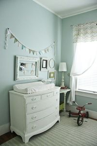 love this color for a nursery. It's a unisex color perfect for boy and girl twins or shared nursery