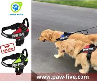 When searching for no pull dog harness for your pet, you need to look the quality for to ensure you're getting the best design for your dog. When you find the right fit and style for your small breed dog, he will be more comfort and this may even ma...