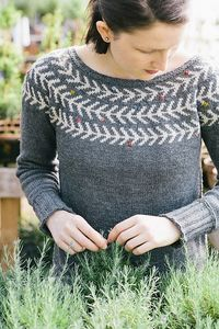 Ravelry: Branches & Buds Pullover pattern by Carrie Bostick Hoge