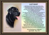 Loss of a Dog Poem | PET LOSS MEMORIAL POEM PERSONALISED A4 PICTURE DOG OR CAT | eBay | See more about dog poems, memorial poems and pet loss.