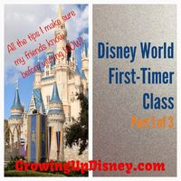This blogger's family has been visiting WDW for over 40 years and her new series contains the information she shares with her close friends to prepare them for a first trip to Walt Disney World. A quick read packed with useful information! #disneykids