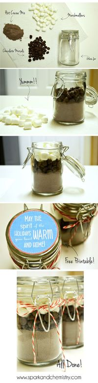 Hot Chocolate in a Jar gift from Spark & Chemistry blog #diy #holidaycrafts #giftidea