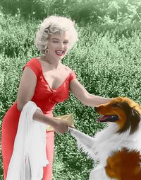 Marilyn monroe and lassie at the ray anthony party: *colorization* Feel free to add this picture to you're own marilyn monroe collection: