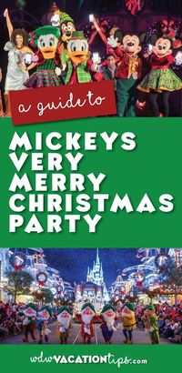 The holiday season is the most magical time of year at Disney World. In true Disney style, all the parks and resorts get a sprinkling of pixie dust and are tran