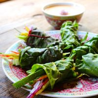 Real Raw Spring Rolls with Creamy Thai Dip