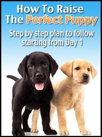 Do You Have A New Puppy? or maybe you are getting a new puppy and want to make sure you know how to properly raise your dog from day 1.This book was written to give you Action Steps to follow ASAP!Here's the breakdown that we will cover.*1.Puppy Proof...