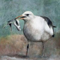 Gull w/ Fish limited edition archival pigment print on canvas $150.00