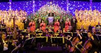 All of the celebrity narrators have now been announced for the 2014 Epcot Candlelight Processional, and the schedule is entirely complete. The most recent additions are those of LeVar Burton and Edward James Olmos who took over the remaining two spots. SE...