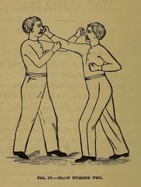 The Science of Self Defence: A Treatise on Sparring and Wrestling, including complete instruction in training and physical developement, by Edmund E. Price, New York, 1867