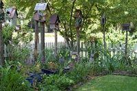 bird houses, cottage gardens and bird garden.
