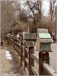 birdhouses, fences and fence posts.