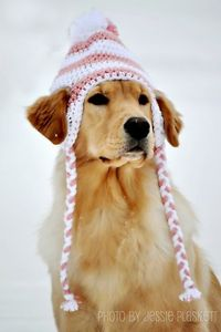Crochet Doggie Hat Pattern