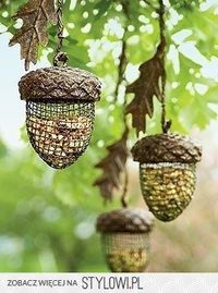 For the birds:)