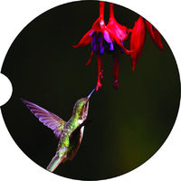 2 Absorbent Car Coasters of Humming Bird. Car Accessories for her, Auto Coaster, Coaster, Cup Holder Coaster, Gift For Her, For Him $14.00