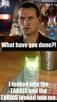 Funny :D - Doctor Who for Whovians! Photo (32568454) - Fanpop fanclubs