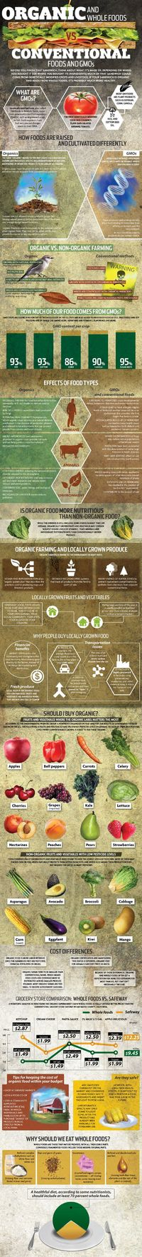 Catch up on all the need-to-know info on GMOs with this round-up of useful infographics.