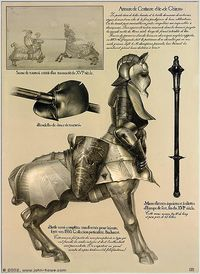 Full upper Armour for a centaur, leaves legs uprotected, but this allows for easier movement.