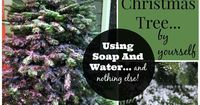 DIY: How To Flock A Christmas Tree Using Soap And Water by Turnstyle Vogue