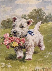 WESTIE TERRIER WITH FLOWER BASKETCUTE LITTLE PRINT