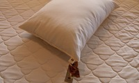 Buy king sized Kapok Down-Alternative Pillow in $105 only
