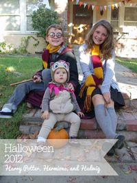 Harry Potter, Hermione, and Hedwig Halloween Costumes