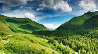 Wallpaper Green Highlands HD Picture