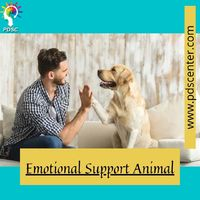 Need to know more about Emotional Support Animal? Suffering from psychological problems? 