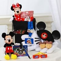 If you want to make a trip to Walt Disney World a little more magical, I suggest WDW Florist Service. When I took my sons for the first time, I ordered special gifts for them that were waiting in our room when we arrived with a special message from Mickey...