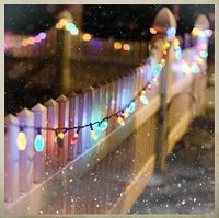 christmas lights & picket fence