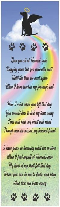 Heaven's Gate Dog Pet Loss Poem Sign with Rainbow, Angel Dog Silhouette, and Paw Prints