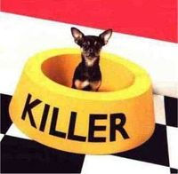 Killer Dog -- NOT lol #bigfoodbowl