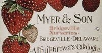 Myer and Son, Bridgeville DE, Marie Strawberries and Brilliant Raspberries.